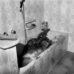 I corpi senza vita di Domenico Santangelo e della sua seconda moglie, Gemma Cenname, furono buttati nella vasca da bagno, insieme al loro cagnolino Dick e coperti d'acqua.