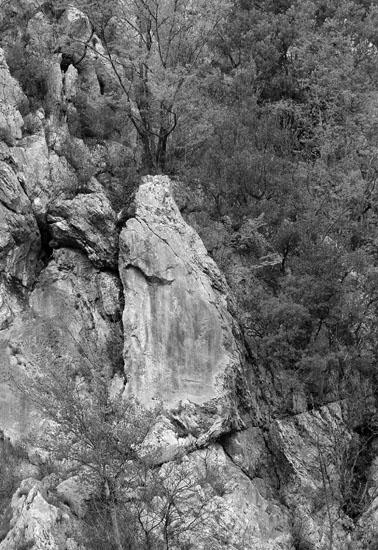 Circa due mesi fa, un incendio boschivo, stranamente sviluppatosi in pieno inverno, ha catalizzato l'attenzione delle persone verso questo punto della montagna e verso questa figura nella roccia che per molti rappresenta la Vergine Maria.