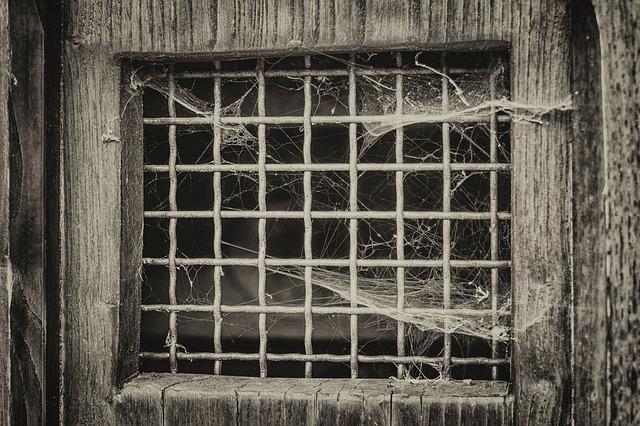 carcere15