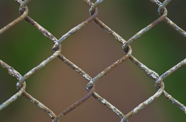 carcere22