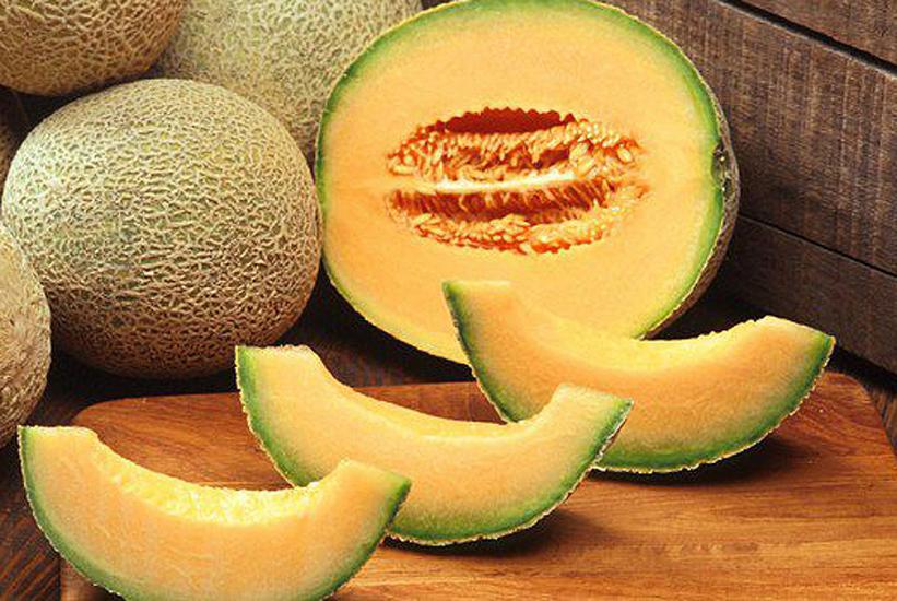 meloni