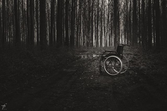 wheelchair-567807_640